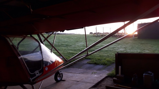 Rhuarb looks out of the hangar at sunrise